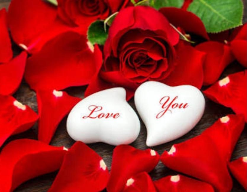 LoveShayri romantic shayari lovely shayari Romansh shayari