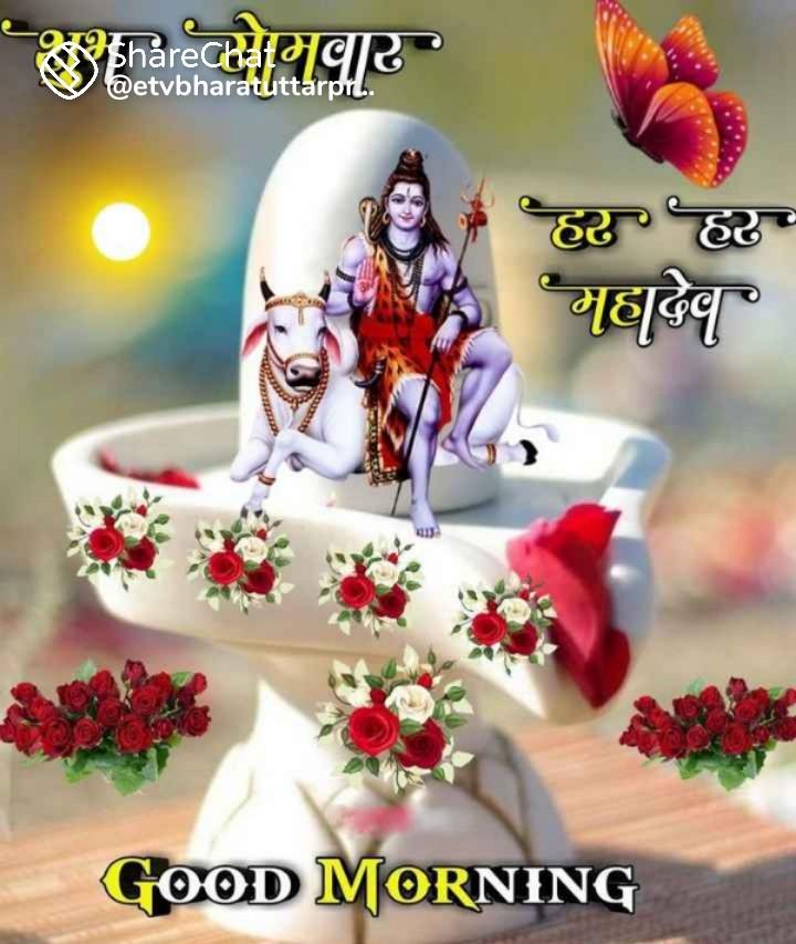 Krina mishra (gudiya)