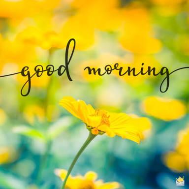 Goodmorning 1