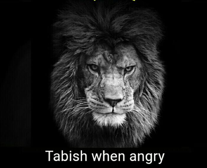 Tabish